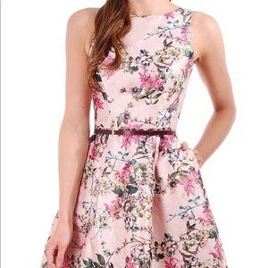 Ted Baker Blossom Jacqaurd V Back Dress